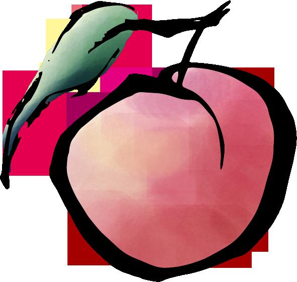 筆で書いた桃のイラスト