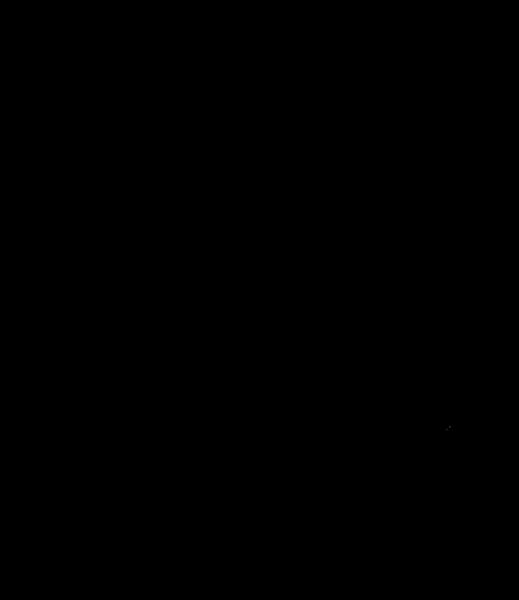 筆で書いた金貨サバの文字