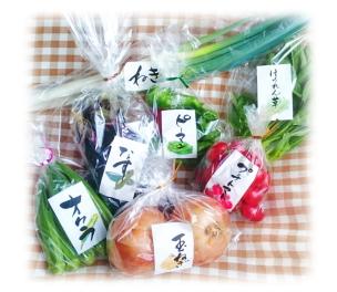 筆文字素材の活用例「野菜のラベル」