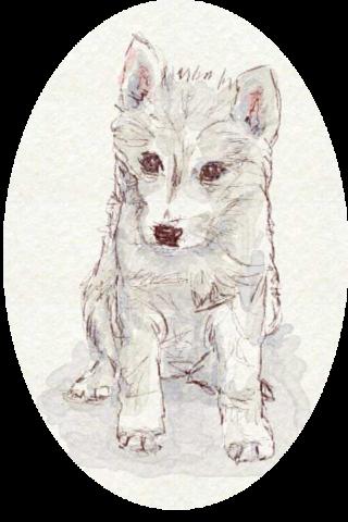 子犬(戌)イラスト